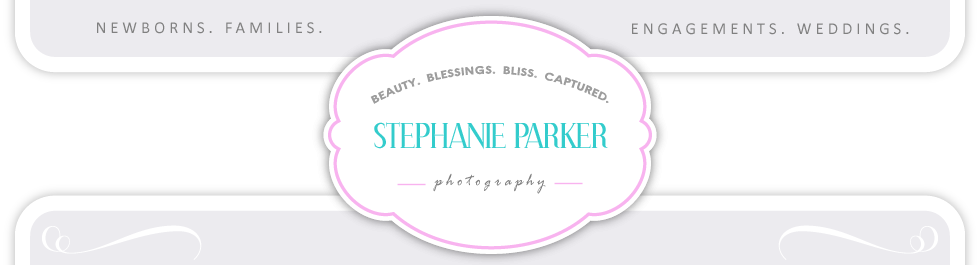 Newborn Family Wedding Photography in Christiansburg, VA >> Stephanie Parker Photography logo